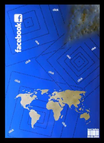 PANNELLO INOX - W.W. FACEBOOK 04-02-2004 - G. Orwell 1984 - (acciaio) -  50 x70 cm. - acciaio e smalti - 2016